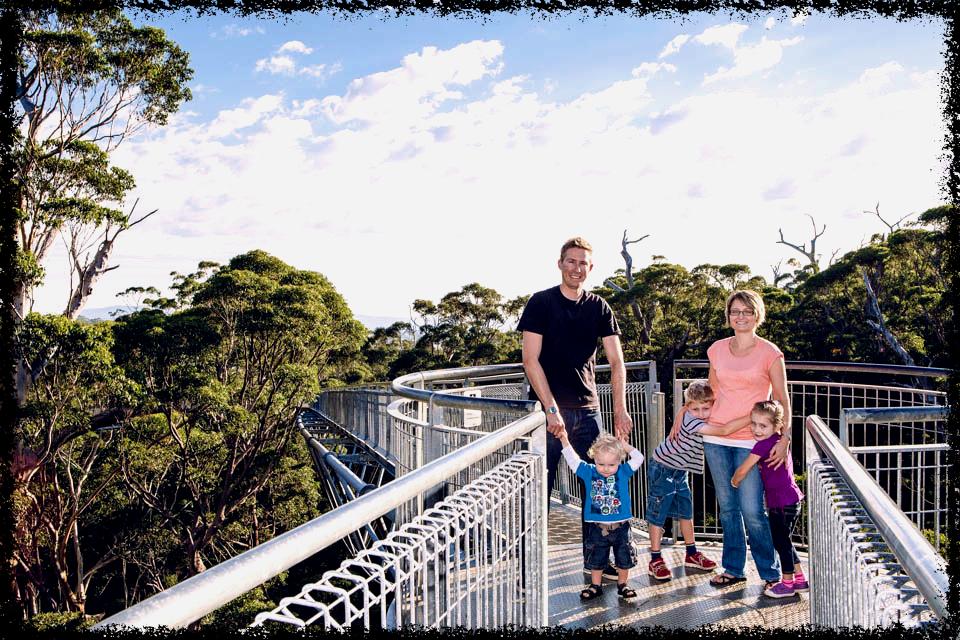 Treetop_Walk_Nic_Duncan_051-lowres_Fotor