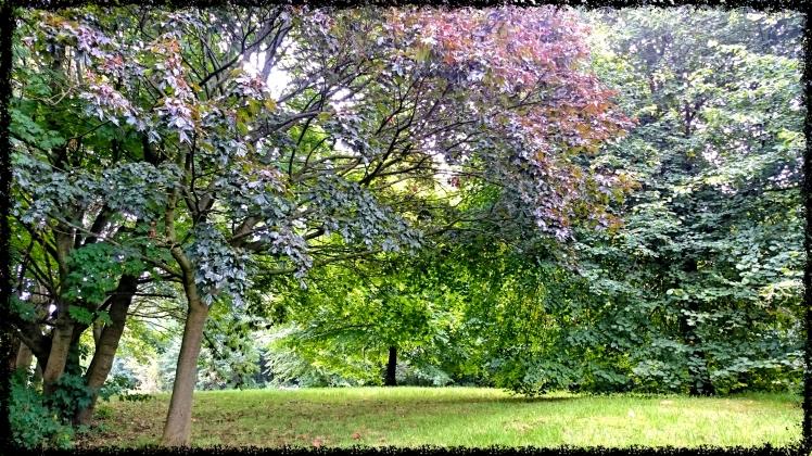 Einer von 60 Parks in Glasgow