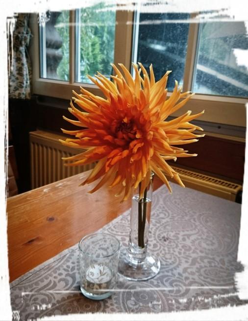 Blumendeko im Restaurant